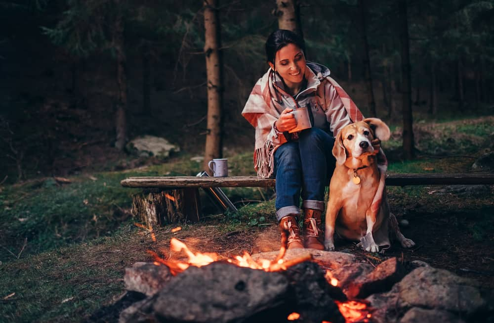 Tips for Keeping Your Dogs Safe While You're Camping